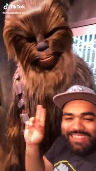 rebel. .. Being chewie must be the best job at disney, you can be an asshole or yell at people who are annoying you, and its completely in character.