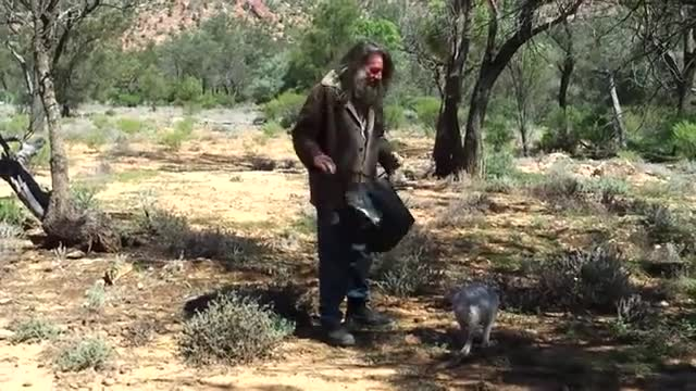 how to catch a kangaroo. .. Aussie man fw catching roos getting some surprising use out of this image