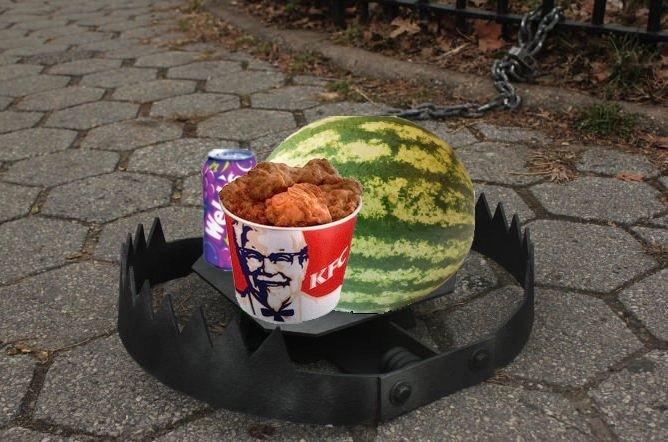 Fried Chicken Jokes: Trap