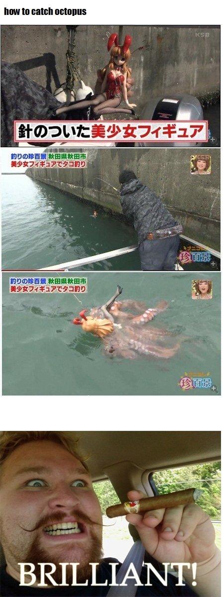 yea japanese. tentacle rape of course. MI! III Ell Illia E TE? anagram