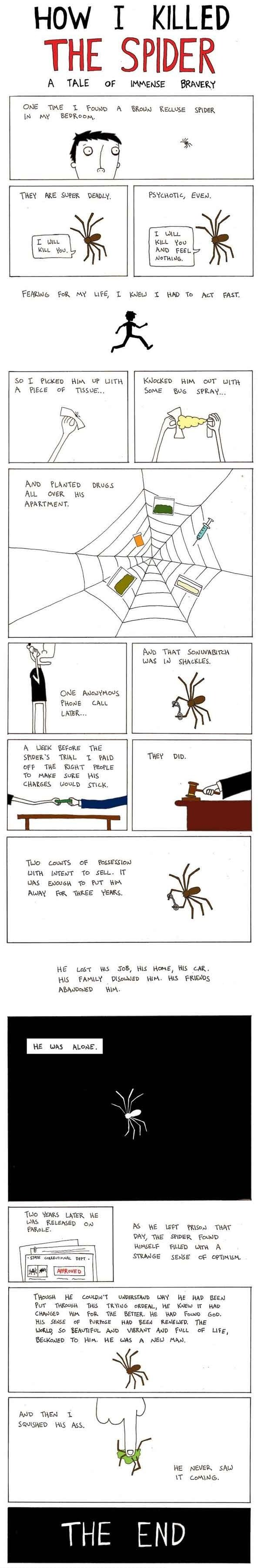 A Tale Of Immense Bravery. How I killed the spider. I haven't seen it on FJ, so I brought it to you. Merry christmas everyone . HOW I KILLED TIE SPIDER A TALE O