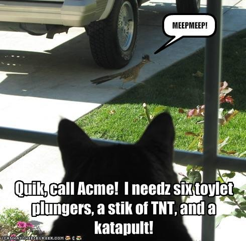 Acme Cat. might be a repost might not oh well. iser.. Acme... Acme everywhere...