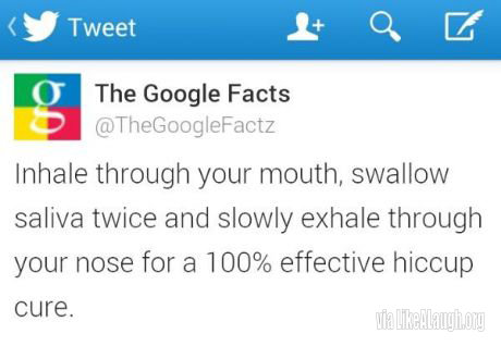 Actual Advice. . The Google Facts Inhale through your mouth, swallow saliva twice and slowly exhale through your nose for a 100% effective hiccup cure.. Now all I have to do is find a 100% effective hiccup cause