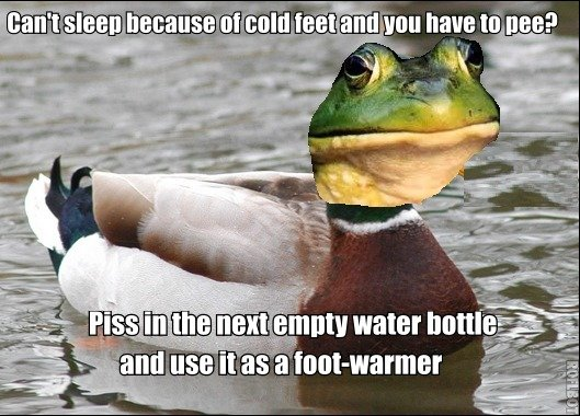 Actual but disgusting advice duck-frog??. OC, ok guys I didn't know in which way to share my great wisdom of disgusting laziness, so I created this new meme-mix