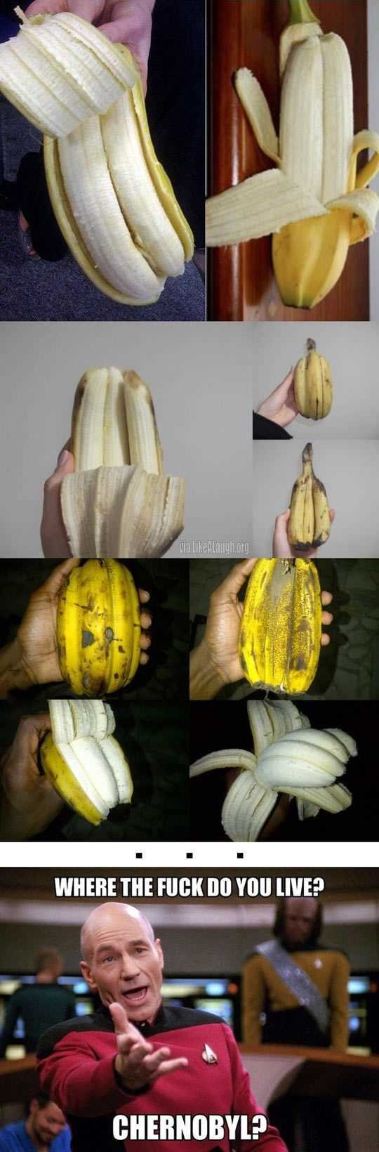 After seeing all these weird bananas. OP will deliverer you some bananas if post comment on your profile or comment. taimanin. i wanna bet that happens all the time on trees. They just don't make it to the store.