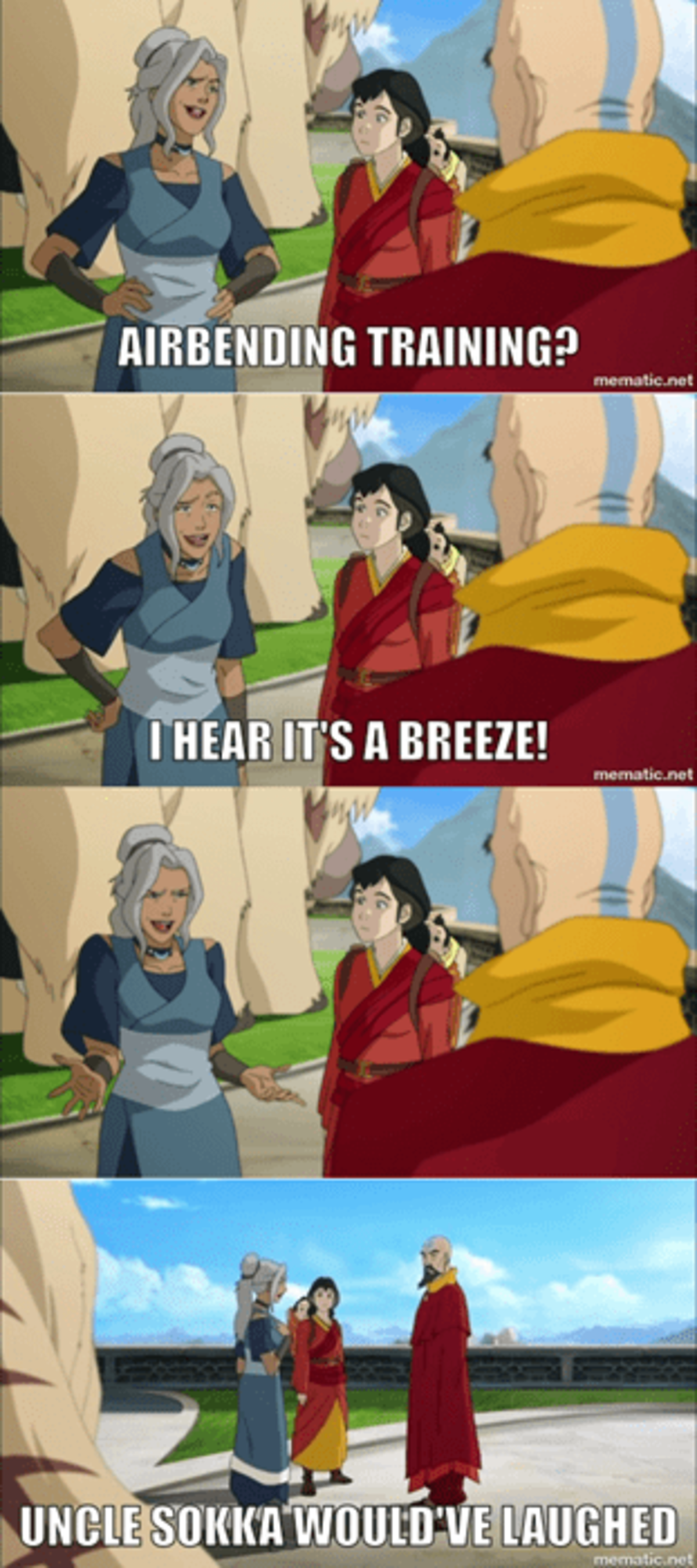 Airbender Pun. .. Does anyone have a gif of Sokka making this expression?