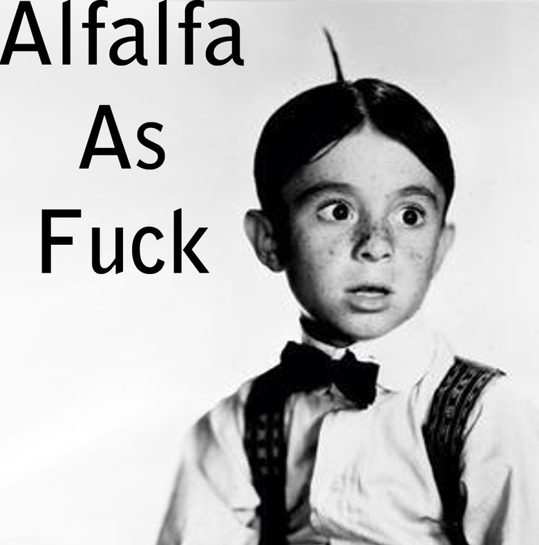 Alfalfa as . Talking to a mate on FB and this came to mind. Pretty sure its OC... alfa as