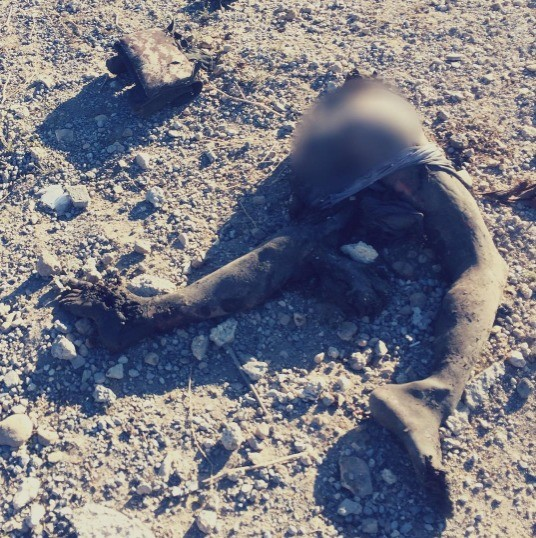 Allah art. What's left of an Islamic State fighter after being hit by an airstrike in Sinjar last November..