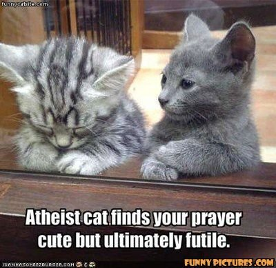 Atheist Cat. . at. tin_ tas ' Itraver we nut ultimately Miler' - -- --. I am Meowchael, the Archangel. Repent!