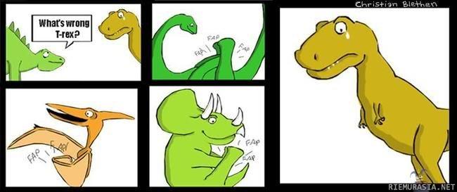 awe rex. .
