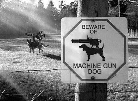 Beware of Machine Gun Dog. .. That is not a machine gun, that is a mini gun