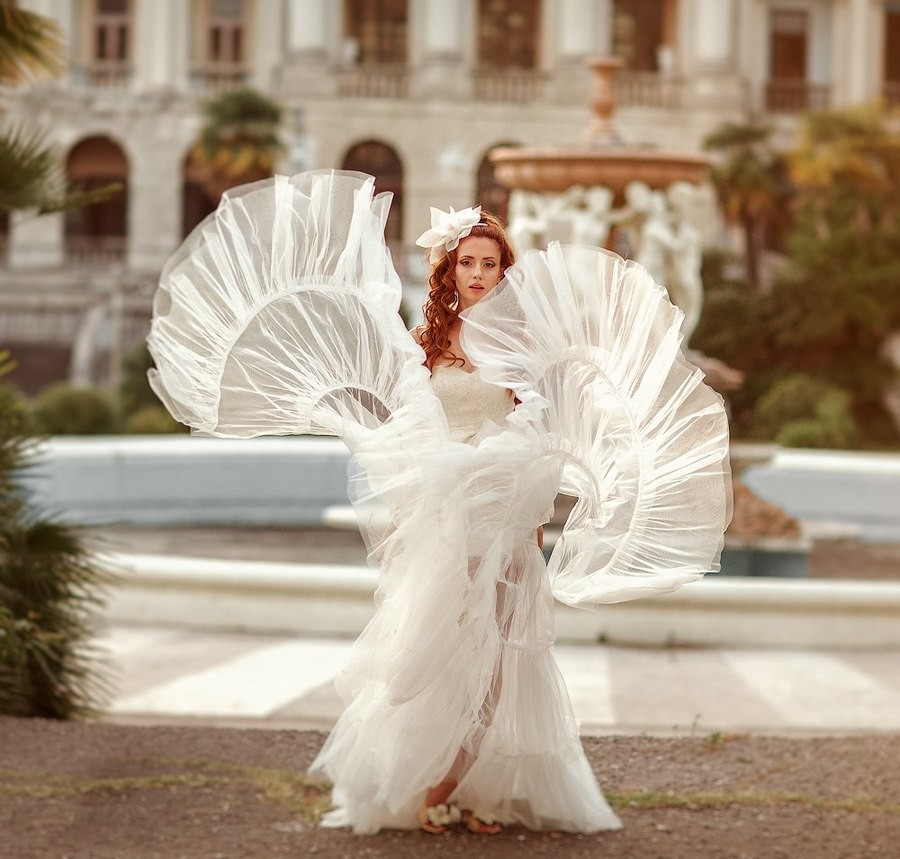 Butterfly white wedding. .