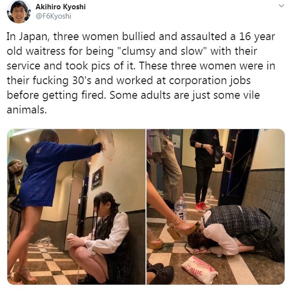 cheap subsequent flawless Seal. .. ahh, Japan, where the bullying is so intense that if it was the same as in USA, the school system would be depopulated due to lead poisoning