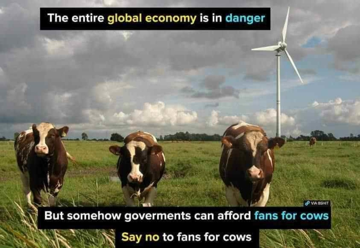 Cowmunism. cow .. O and X