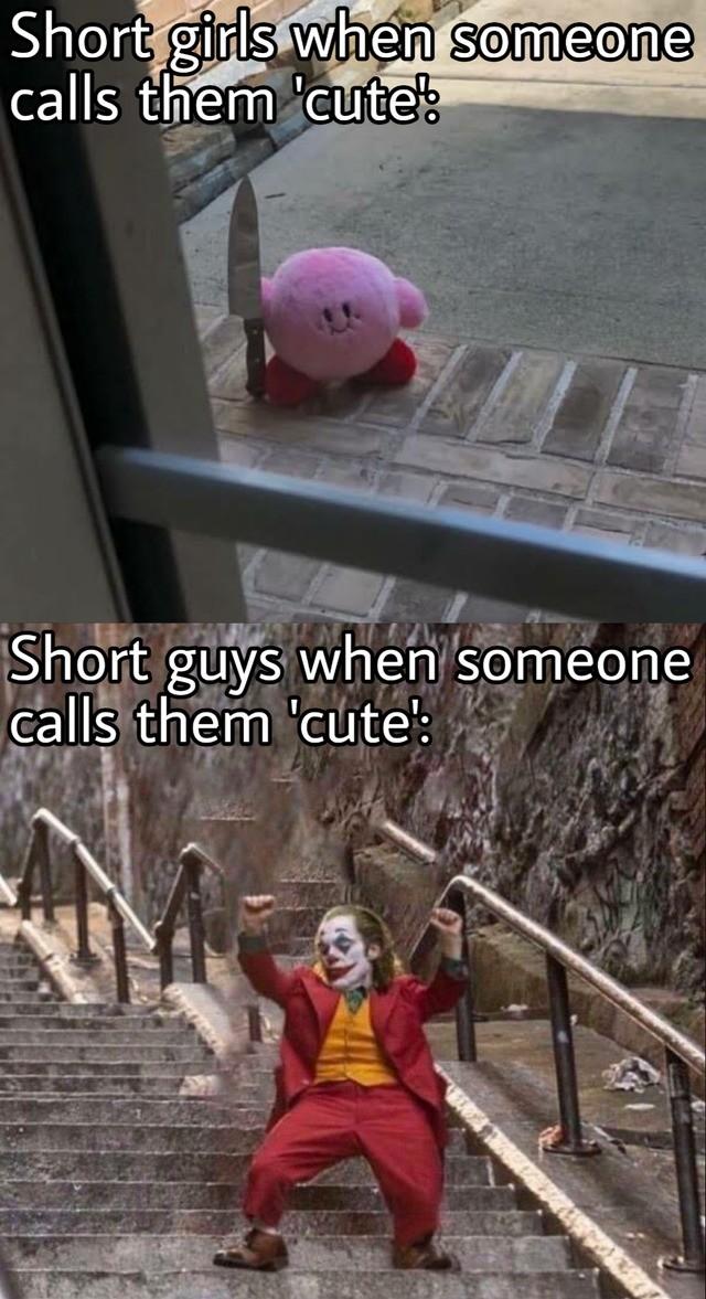 cute. .. Lies. I'm a short guy and nobody calls me cute.