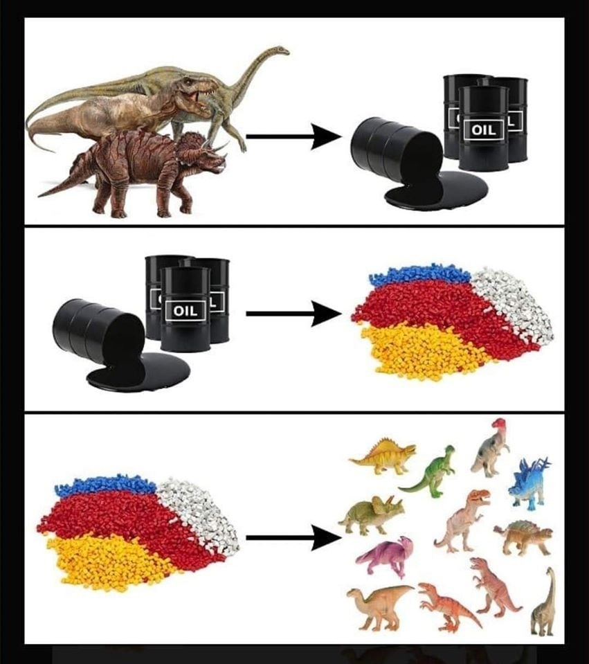 Cycle of life. .. Oil didn't come from dinosaurs. Unfortunately, it isn't that interesting.