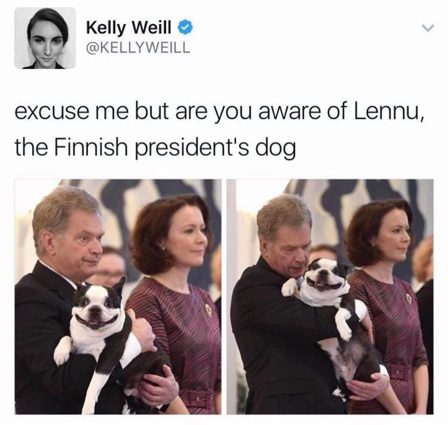 :D. . Kelly Weill 9 IN., I ll excuse me but are you aware of Lenna, the Finnish president' s dog