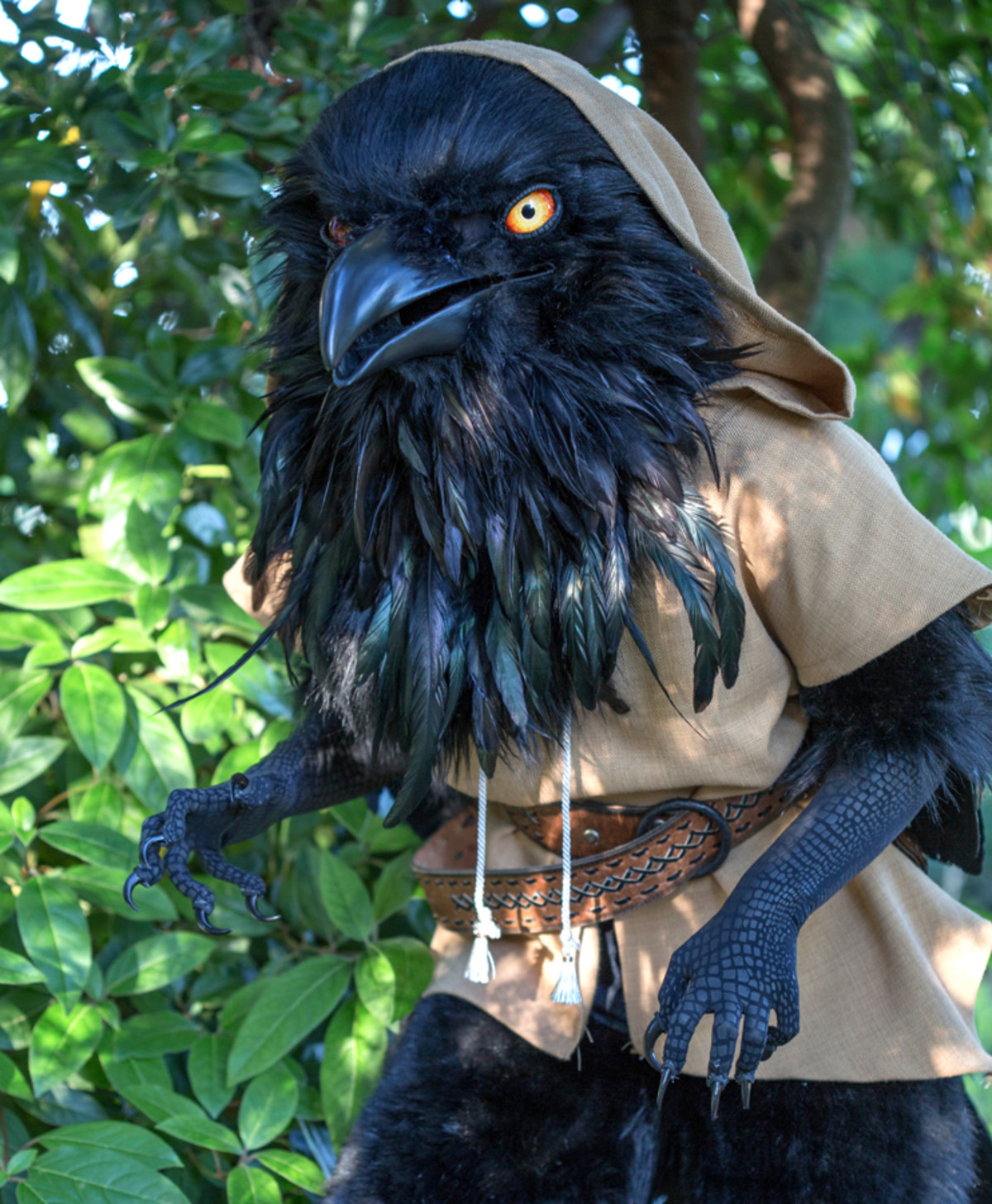 D&D Kenku Cosplay. .. Raven person mentioned. Swell with Pickle Pee. Swell with Pump-a-rum. CAW!!!