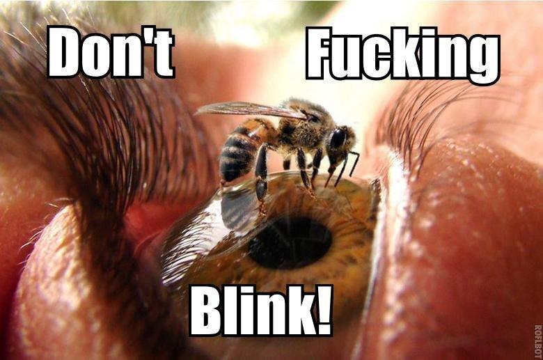 Don't do it.. Just dont... It won't really matter, the stinger has already been deployed, if you look closely.