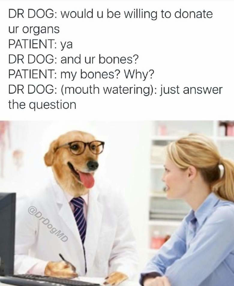 DR DOG. . DR DOG: would u be willing to donate organs PATIENT: ya DR DOG: and bones? PATIENT: my bones? Why? DR DOG: (mouth watering): just answer the question. Stay away from my bones!
