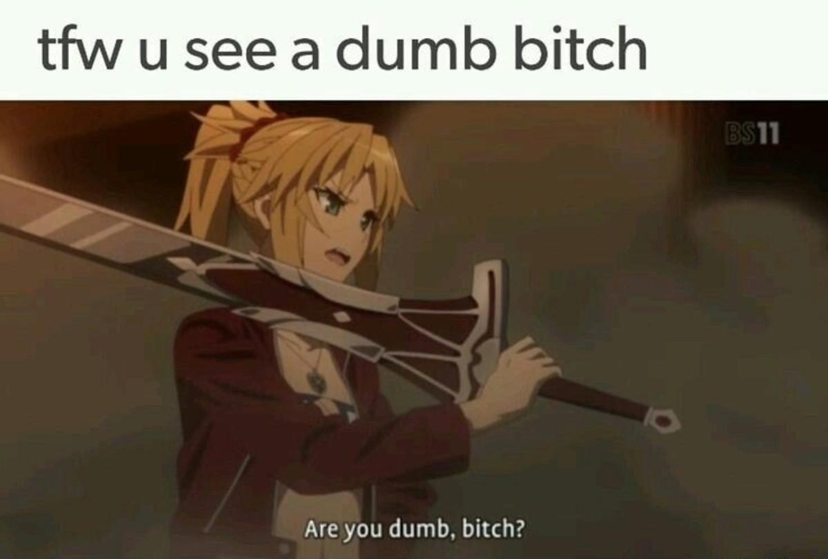 dumb bitch. . Are you dumb, bitch?