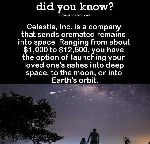 DYK Comp #89. . did you know? Celestis, Inc. is a company that sends cremated remains into space. Ranging from about 000 to , 500, you have the option of launch