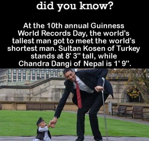DYK Comp #92. . did you know? At the 10th annual Guinness World Records Day, the world' s tallest man got to meet the world' s shortest man. Sultan tween of Tur