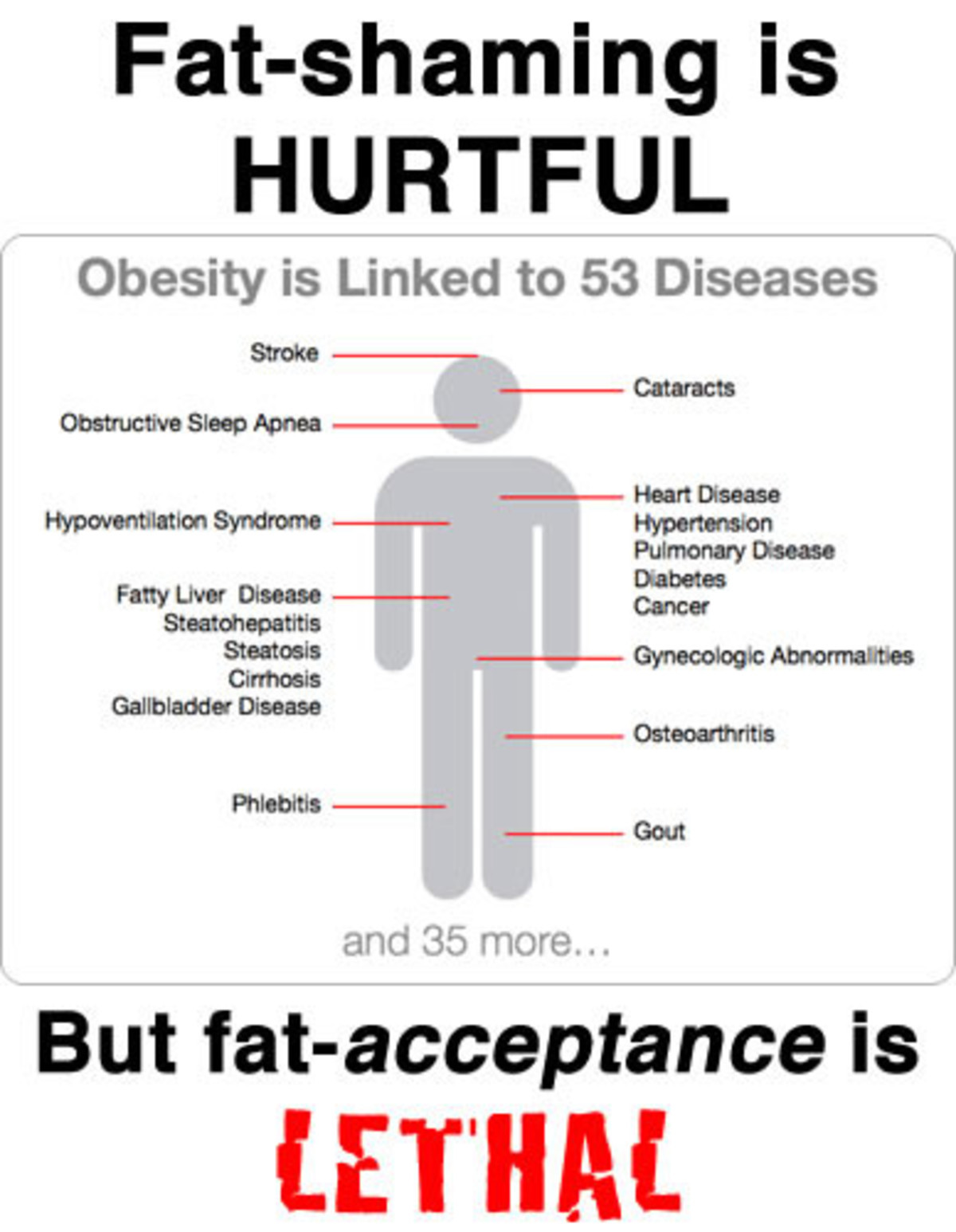 Fat Shaming. .. Being fat is not a good thing, that is obvious. Being slightly overweight is okay. Trying to get people to be fit and not be unhealthy is perfectly fine. What i