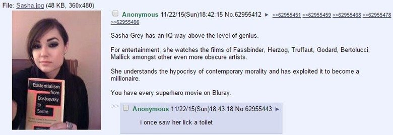 fa/tv/irgins talk about Sasha. . File: (48 KB, 360x480) Sasha Grey has an IQ way above the level of genius. For entertainment, she watches the films of Fassbind