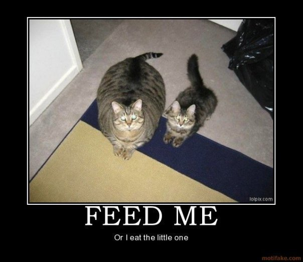 Feed ME!. . FEEL) h/ IE Dr f eat the little we