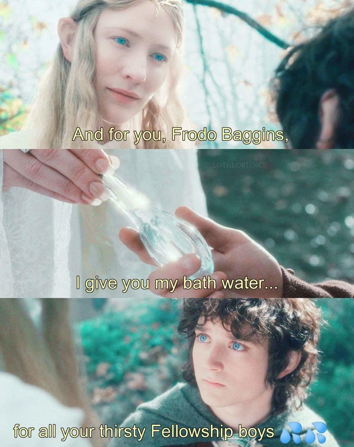Fellowship thirst. .. Gamer-elf bath water