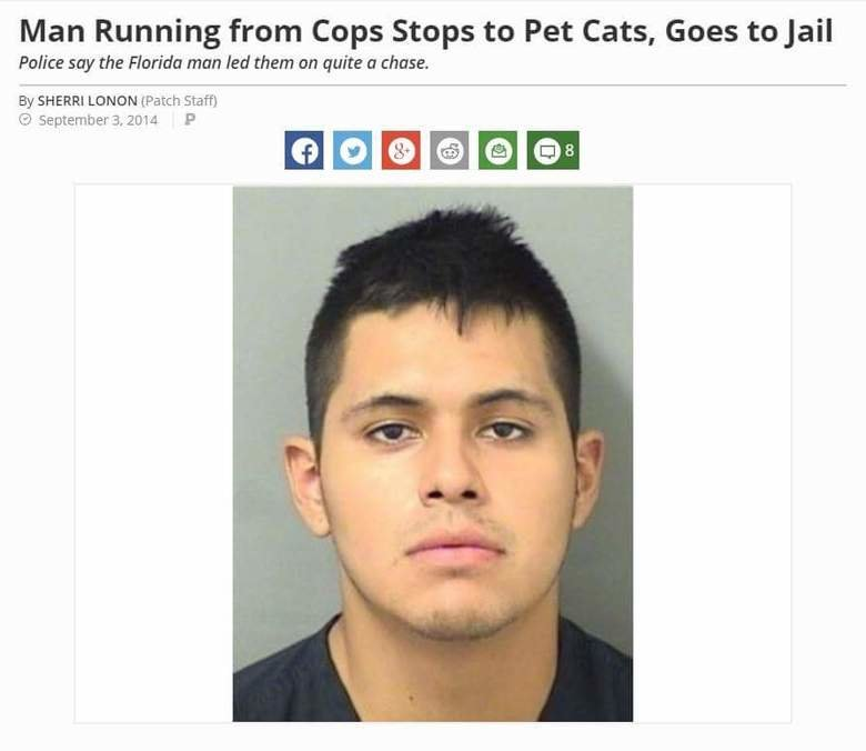 Florida again. . Man Running from Cops Stops to Pet Cats, Goes to jail Police my the Florida man Jed them on quite tr these. By SHERRI LEIDEN (Patch Staff) C) S