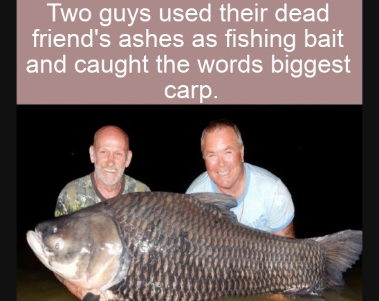 forbidden bait. .. When they prepare that fish they'll be eating a miniscule amount of their pal too. Whew lad