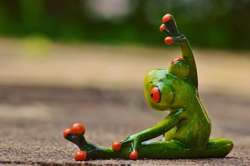 Frog Yoga. .