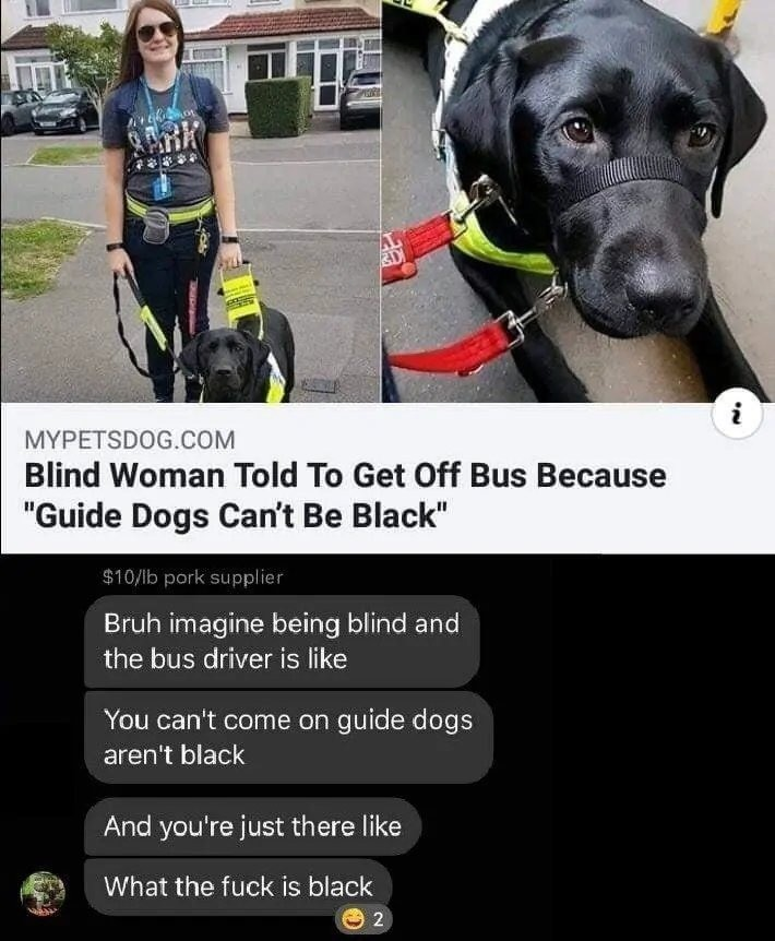 goofy abiding Goose. .. That's not even what happened. Some soggy cunt on the bus claimed only Golden Retrievers can be guide dogs. It didn't even involve the bus driver.
