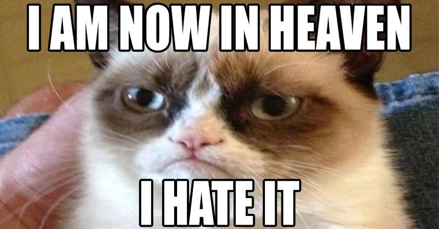 Grumpy Cat RIP. .