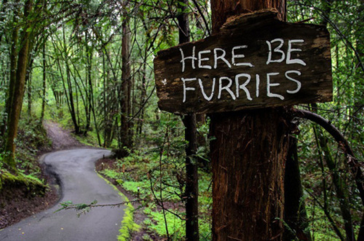 Here Be Furries. .