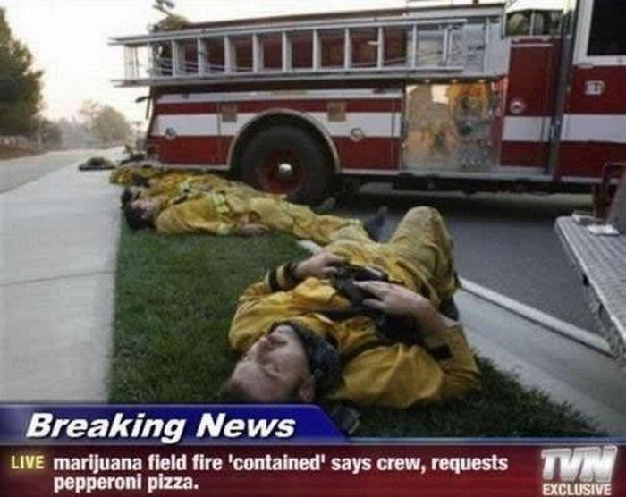 High. stumbleupon. Breaking Ne Chairs LIVE marijuana field the maintained' says crew, requests pepperoni plaza,