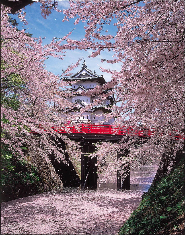 Hirosaki Castle (Hirosaki, Japan). .. Woah they made hanamura from overwatch into a real thing