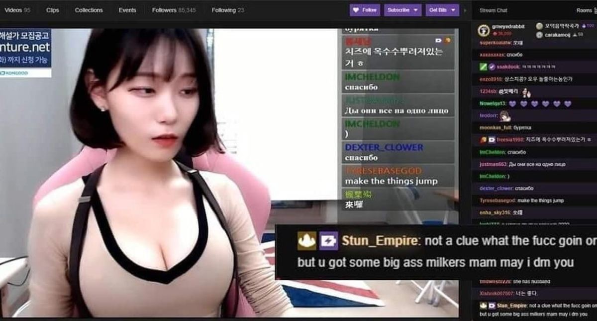 """""""How to woo a lady"""" by Twitch chat. .. I thought I blocked the cringe channel"""
