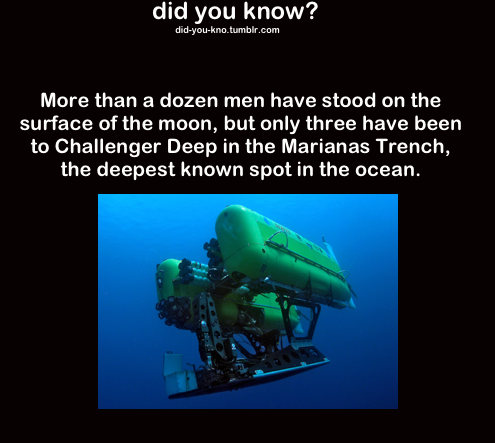 I Know Who. Michael, Franklin, and Trevor. did you know? More than a dozen men have steed on the surface of the mean, but only three have been to Challenger Dee