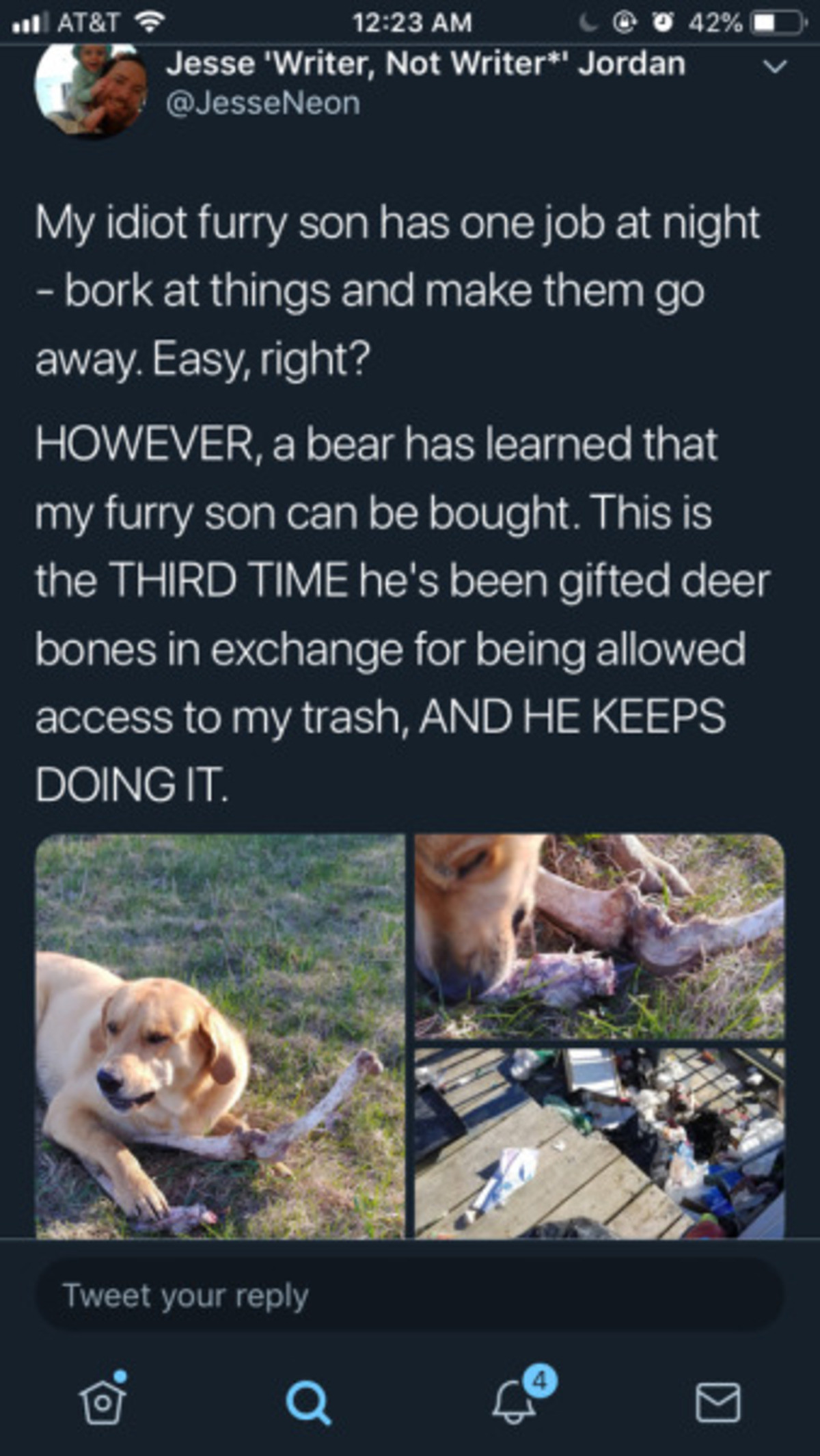 Idiot furry son. .. i thought he was talking about a real furry human person, then i figured out it was about a dog. then i realized the bear has learned of bargaining and will soo