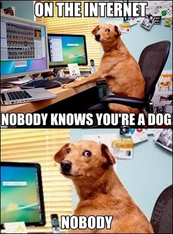 "Internet Dog. Not a damn soul. . Fun. NUBBIN ""WWY You' ll! ll talt. this mini dog paw cannot be unseen"