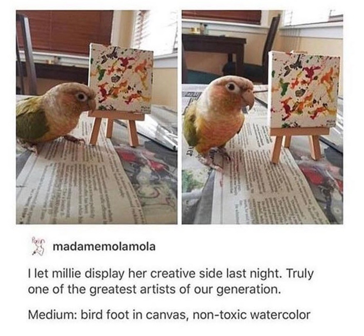 Mcburd the painter. . I let mime display her creative side last night. Truly one of the greatest artists of our generation. Medium: bird foot in canvas, (' wate