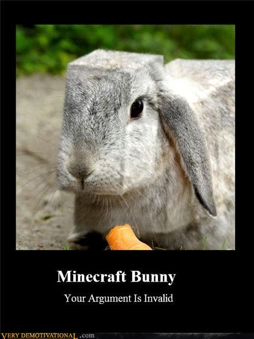 MineCraft lolz. . Statecraft Bunny Your Argument ls Invalid V ERY I cilm