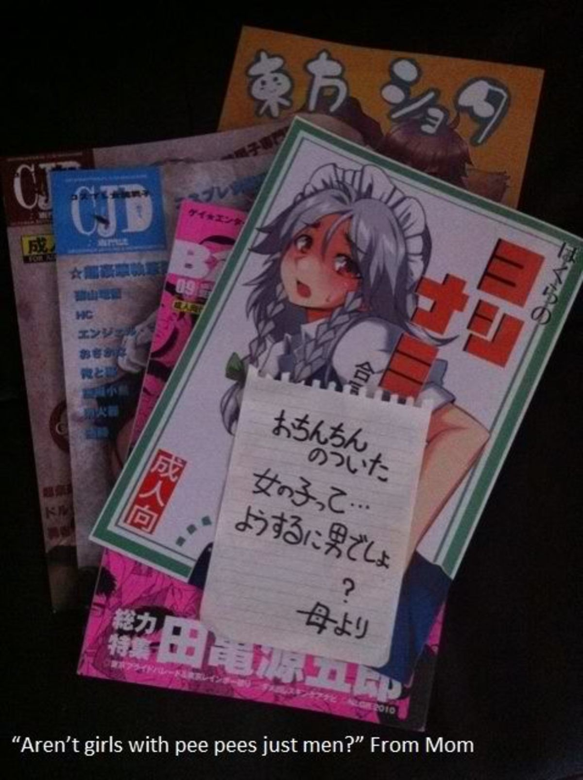 Mom found the girl doujins. .. It's not a dickgirl its a man because that's a trap doujin Also if you actually bothered looking it up you'd find dickgirls are totally different from men MOM,