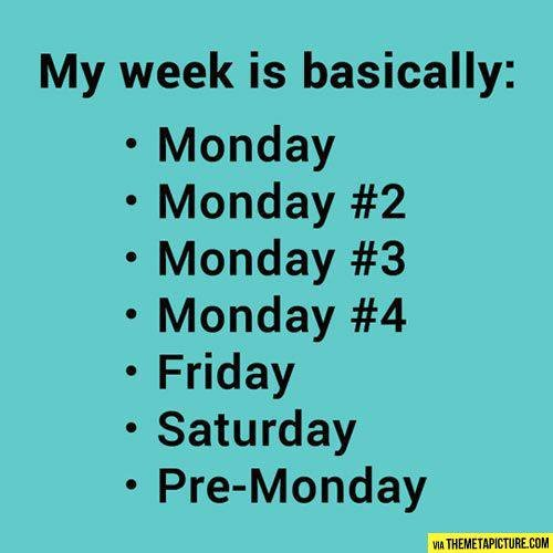 My Week. . My week is basically: Monday Monday #2 Monday #3 Monday #4 Friday Saturday thal. I hate Tuesdays, at work all they play is Country Music...and it gets grating...fast. Monday: Modern Pop (Nicki Minaj, Taylor Swift, etc) Tuesday: Country Wedne