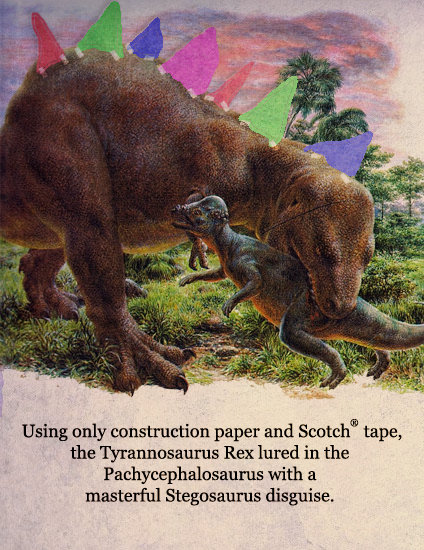 No wonder it was so successful!. Pachycephalosaurus grew to be about 15 feet long (4.6 m) and may have weighed roughly 950 pounds (430 kg). Pachycephalosaurus p