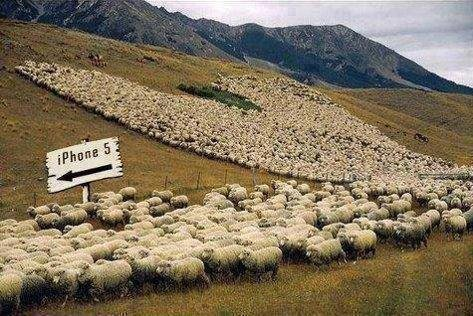 Oh The Sheeple. go get your iphone, because thats what a good herd does.. Too relevant.
