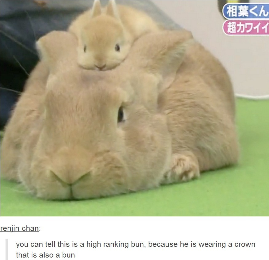 ojama emperor. .. maybe the small bun is the true emperor and the big bun is just a servant